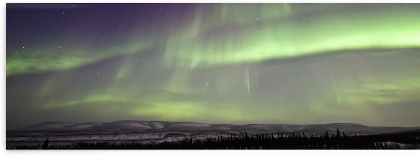 Aurora Borealis Or Northern Lights Over The Eagle Plains, Dempster Highway, Yukon. by PacificStock