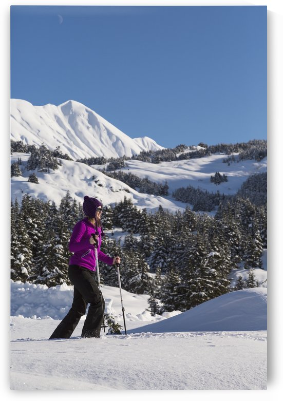 Woman snowshoeing on a sunny day at Turnagain Pass, Kenai Peninsula, Chugach National Forest, Southcentral Alaska, Winter by PacificStock