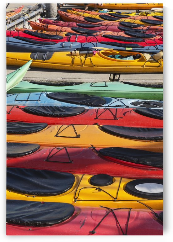 Multi-coloured kayaks together at boat dock, Prince William Sound; Valdez, Alaska, United States of America by PacificStock