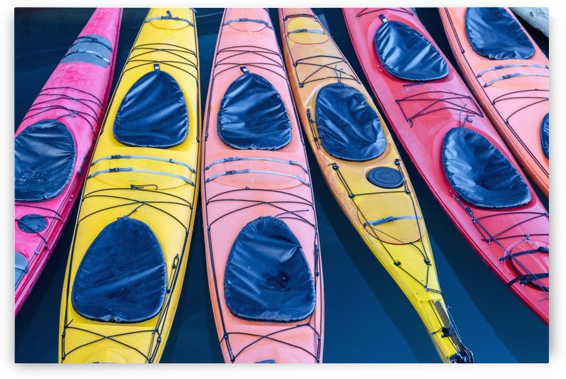 View of colorful kayaks tied to the harbor dock in Valdez, Southcentral Alaska, Summer by PacificStock