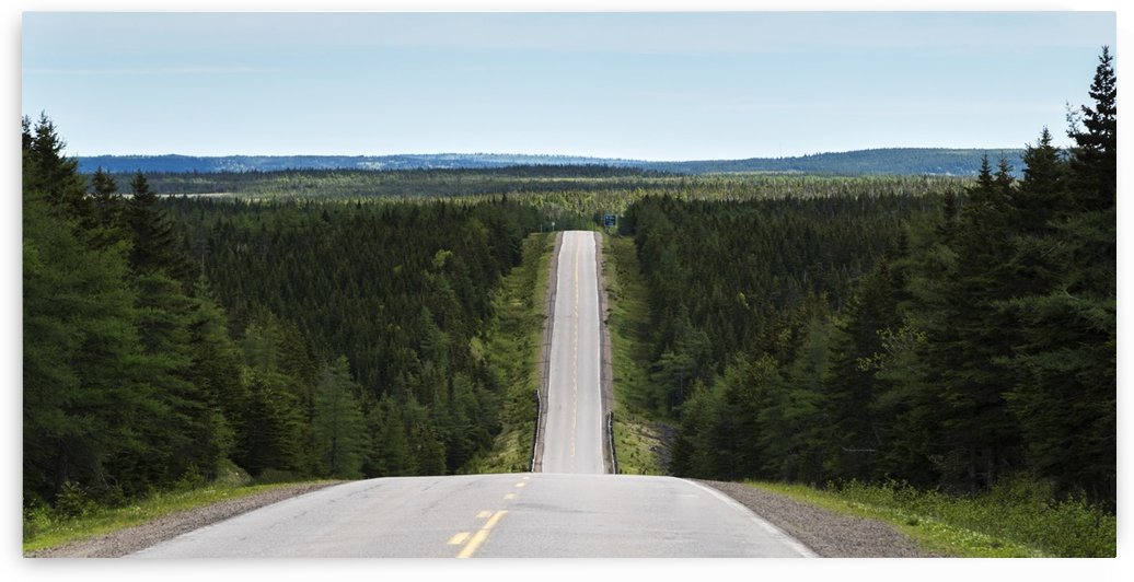 A road dips down into a valley and comes back up again and leads into the distance; Pleasant Bay, Nova Scotia, Canada by PacificStock