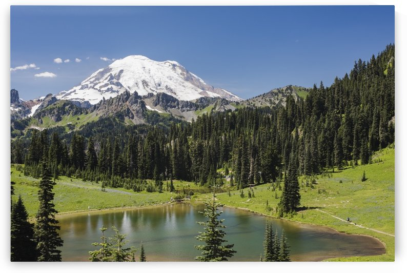 A view of Mount Rainier above Tipsoo Lake, near the top of Chinook Pass on Highway 410 in the Cascade Mountains; Washington, United States of America by PacificStock