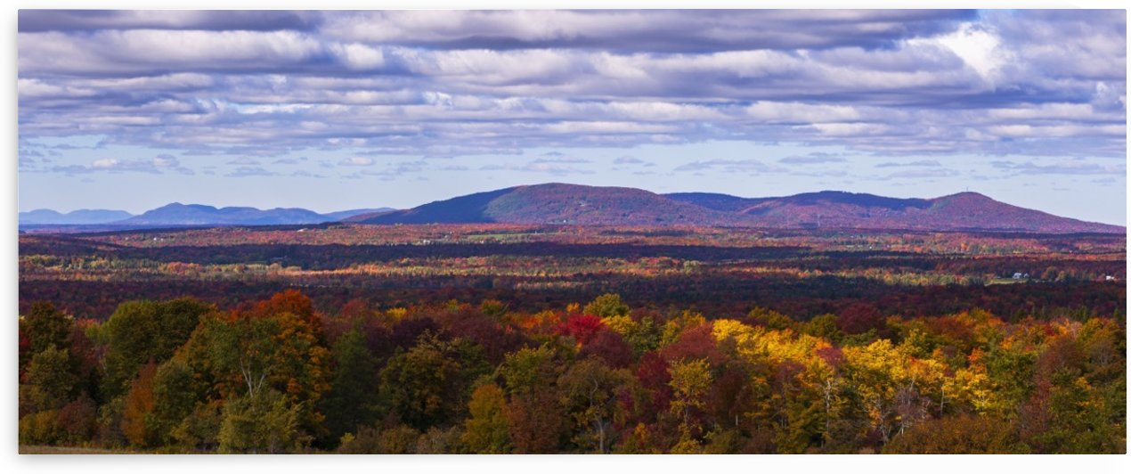 Mountain range in autumn colours with autumn coloured forest in the foreground; West Bolton, Quebec, Canada by PacificStock