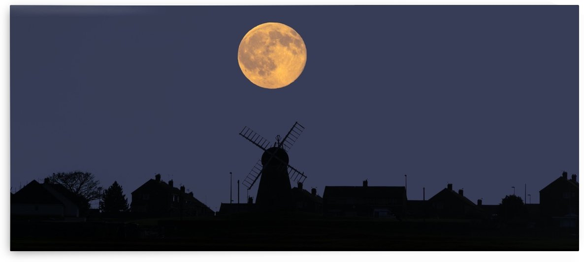 A glowing full harvest moon over the silhouette of a skyline of buildings; Whitburn, Tyne and Wear, England by PacificStock