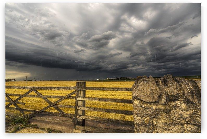 A farm field under a dark, stormy sky; Whitburn, Tyne and Wear, England by PacificStock