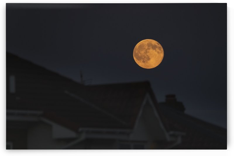 Full harvest moon glowing in the night sky over houses; South Shields, Tyne and Wear, England by PacificStock