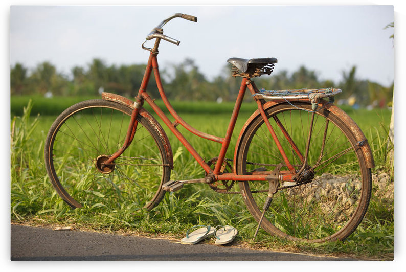 Indonesia, Bali, Ubud, Vintage bike in front of rice fields by PacificStock