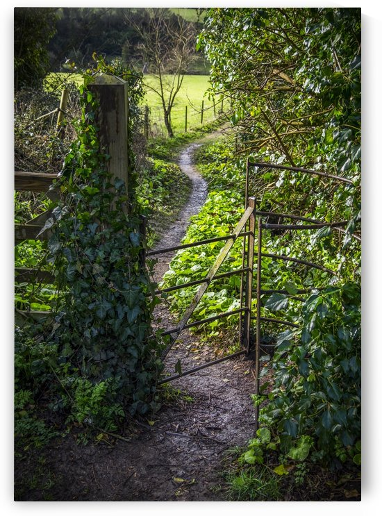 A pathway through a gate with ivy growing on the post; Bath, England by PacificStock