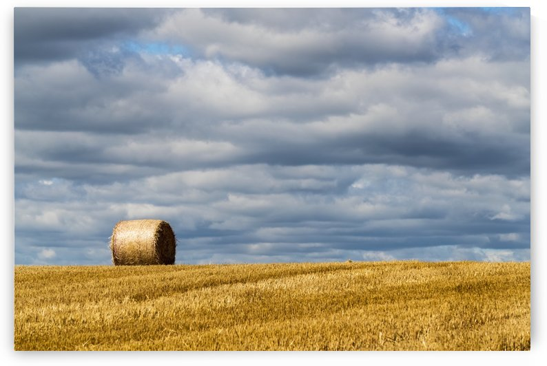 A single hay bale on a cut field under a cloudy sky; Ravensworth, North Yorkshire, England by PacificStock