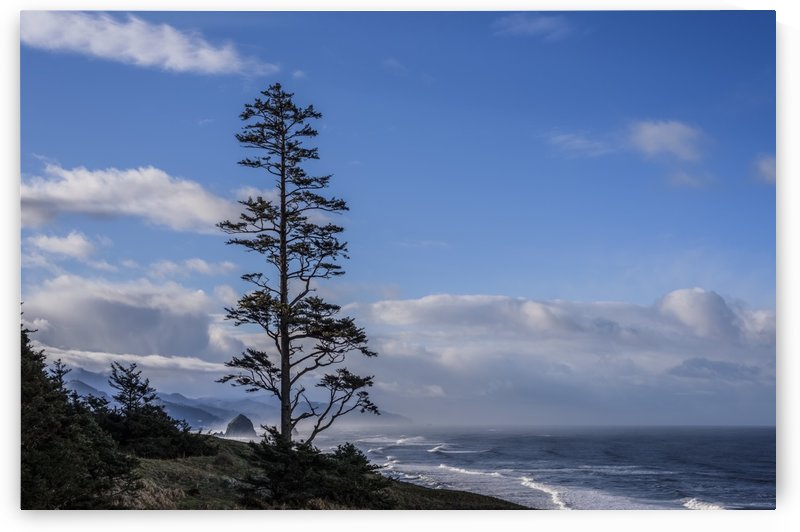 Haystack Rock can be seen to the South of Ecola State Park; Cannon Beach, Oregon, United States of America by PacificStock