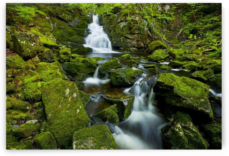 Waterfall and mossy rocks, East branch of Great Village River, near Wentworth Valley; Nova Scotia, Canada by PacificStock