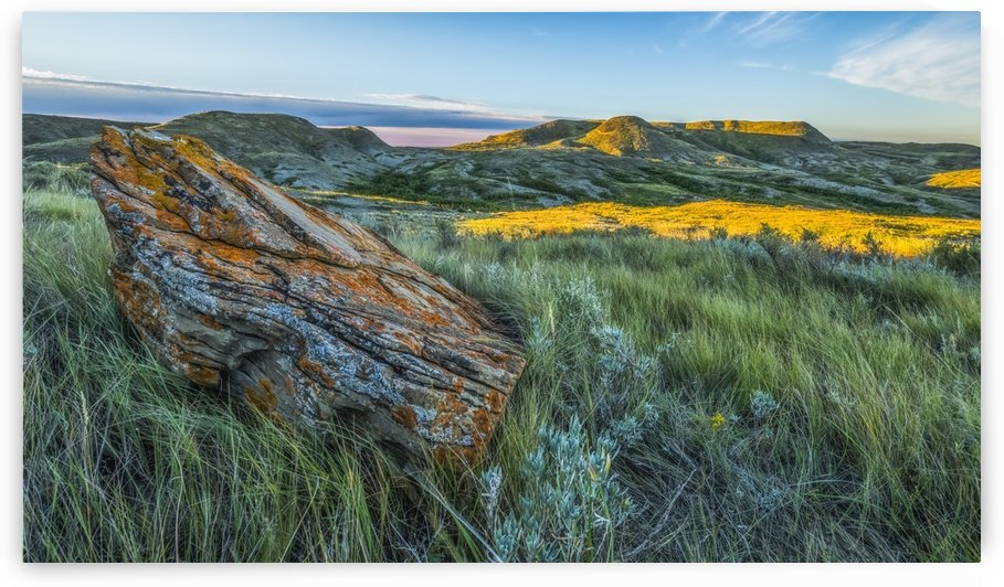 A lichen covered rock with 70 Mile Butte in the distance, Grasslands National Park; Saskatchewan, Canada by PacificStock