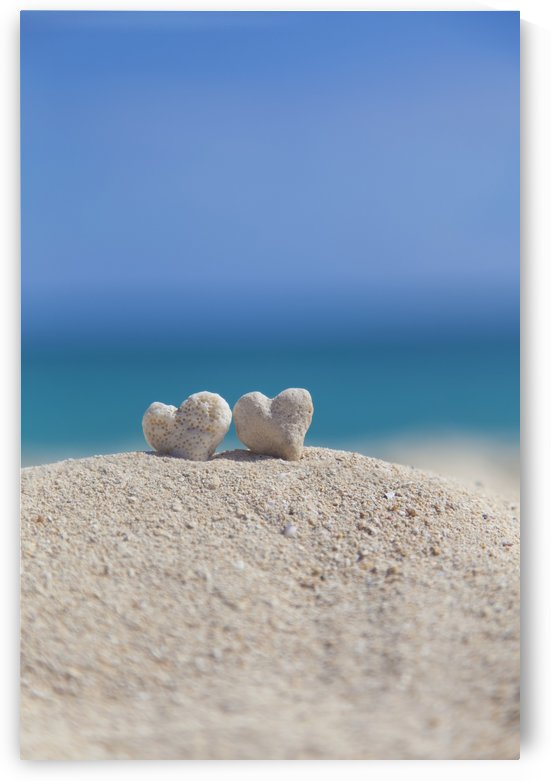 Two white heart shaped coral rocks placed together on sand at the beach; Honolulu, Oahu, Hawaii, United States of America by PacificStock