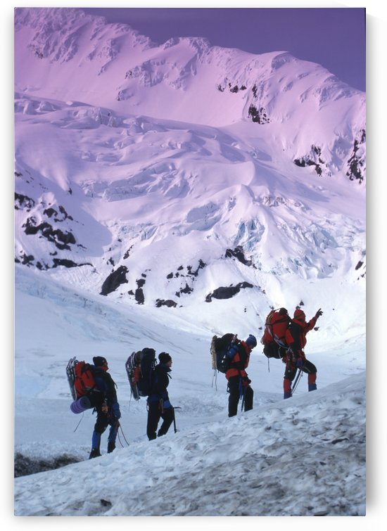 Mountain Climbers Byron Glacier Southcentral Ak Spring by PacificStock