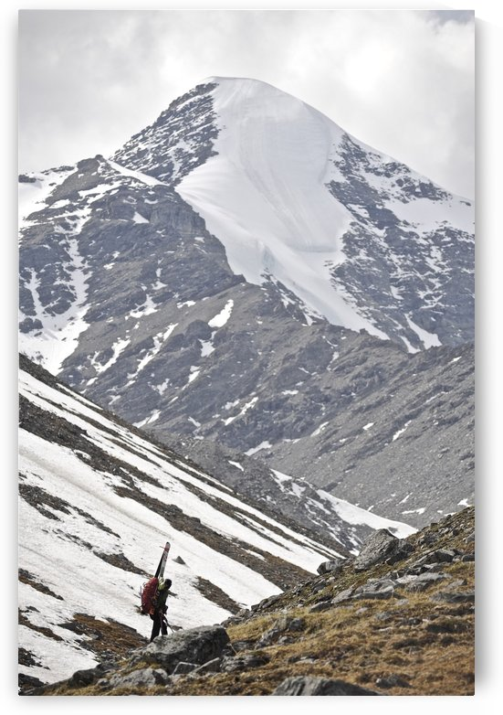 Backcountry Skier Hikes With Pack And Skis Up The Katak Creek Valley, Brooks Range, Anwr, Arctic Alaska, Summer by PacificStock