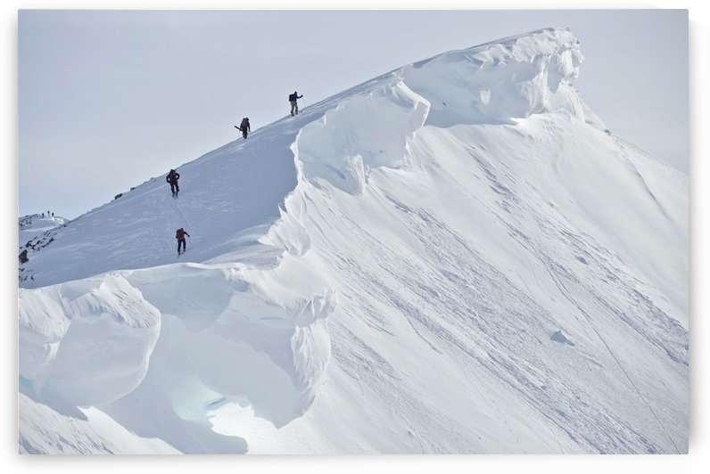 Backcountry Skiers On The Ridge Of Pms Bowl In Turnagain Pass, Chugach National Forest Southcentral Alaska, Winter by PacificStock