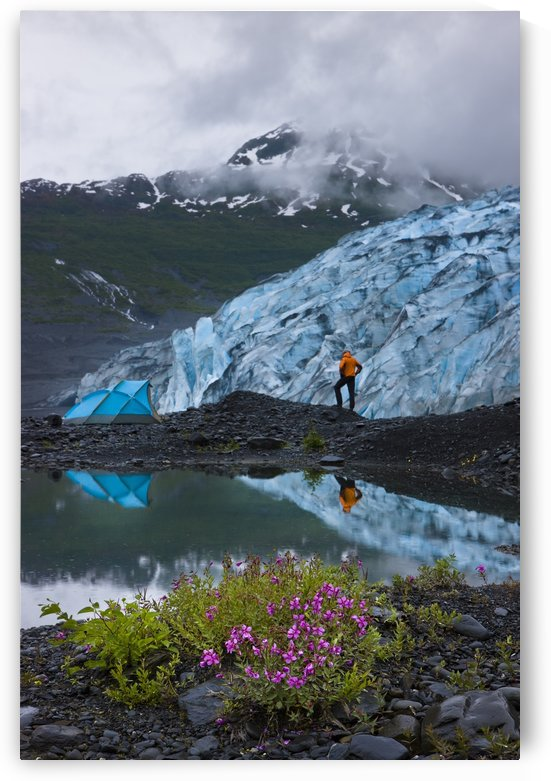 Male Hiker Views Shoup Glacier Standing Next To His Lit Tent, Shoup Bay State Marine Park, Prince William Sound, Southcentral Alaska by PacificStock