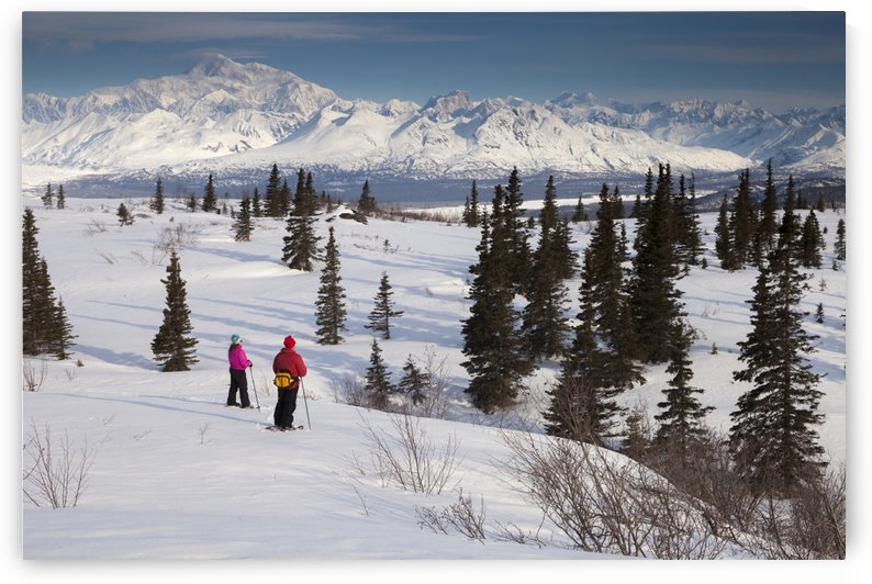 Couple Recreational Snowshoeing In Denali State Park With The Alaska Range And Mt. Mckinley In The Background, Southcentral Alaska, Spring by PacificStock