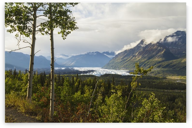 Matanuska Glacier, viewed from Glenn Highway near Sheep Mountain; Alaska, United States of America by PacificStock
