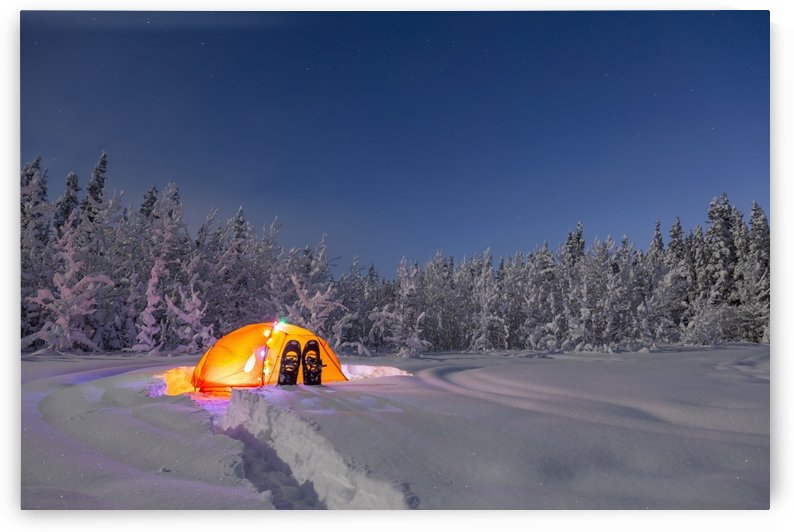 A glowing tent covered in string lights sits in the middle of an snowy spruce forest, snowshoes in the deep snow outside the tent, moonlight casting shadows on a clear winter night, interior Alaska; Gakona, Alaska, United States of America by PacificStock
