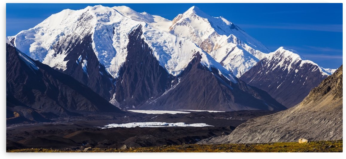 Panorama view of Mt. Brooks (nearest snow-capped mountain) and Denali (behind) towering over the Muldrow Glacier in Denali National Park; Alaska, United States of America by PacificStock