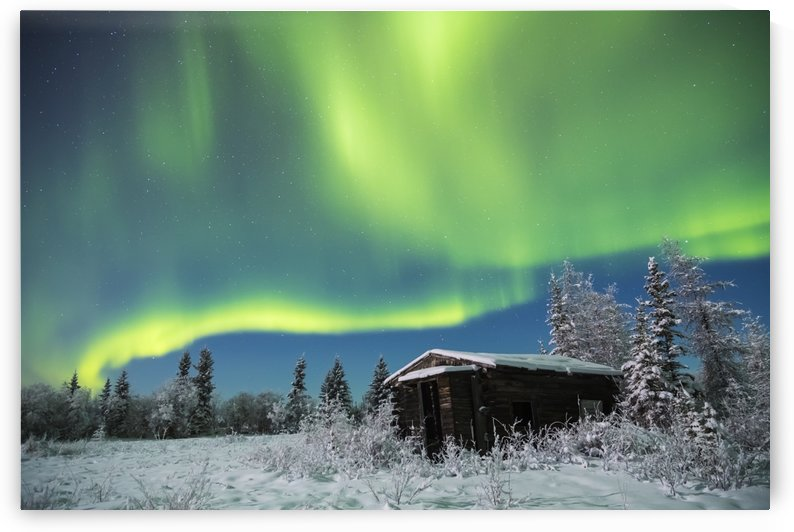 An abandoned cabin along the Richardson Highway sits quiet in the snow beneath the aurora on a cold winter night; Alaska, United States of America by PacificStock