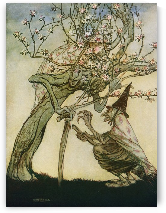 Illustration to the story The Two Sisters. From the book English Fairy Tales retold by F.A. Steel with illustrations by Arthur Rackham, published 1927. by PacificStock