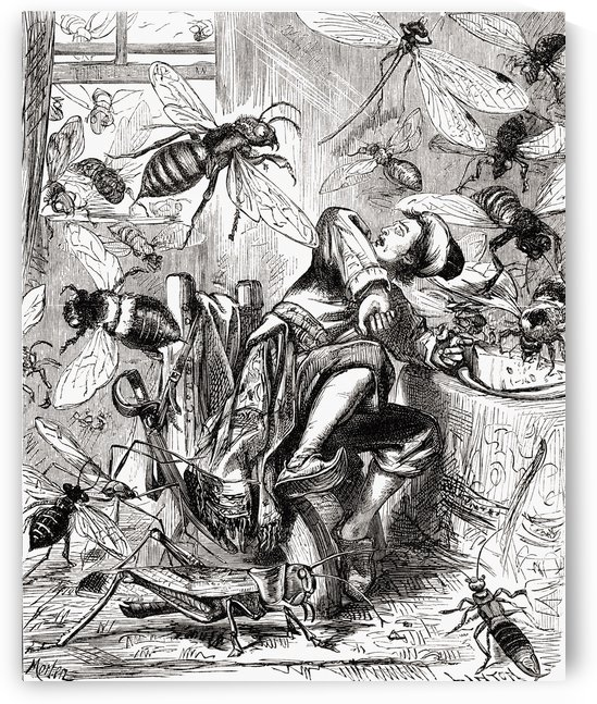 Some of them seized my cake and carried it piecemeal away. Gulliver attacked by giant insects during his voyage to Brobdingnag.  From Gullivers Travels published c.1875 by PacificStock
