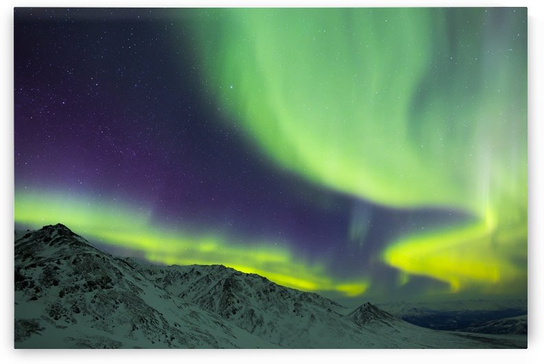 Aurora borealis swirls over mountains within Denali National Park on a very cold winter night; Alaska, United States of America by PacificStock