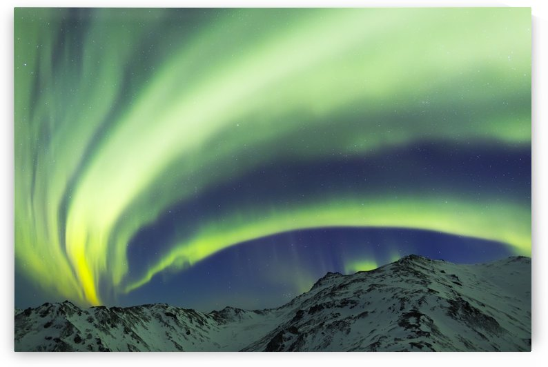 Aurora borealis stretches over mountains within Denali National Park on a very cold winter night; Alaska, United States of America by PacificStock