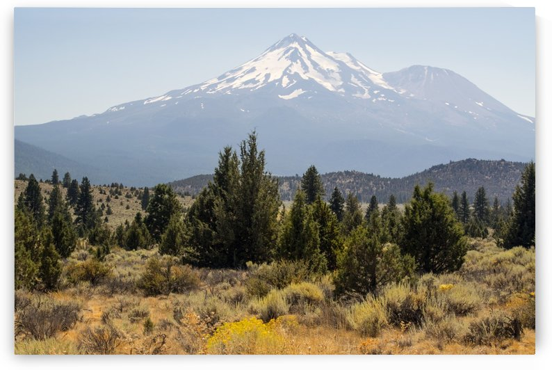 Mount Shasta and Shastina by Frank Wilson