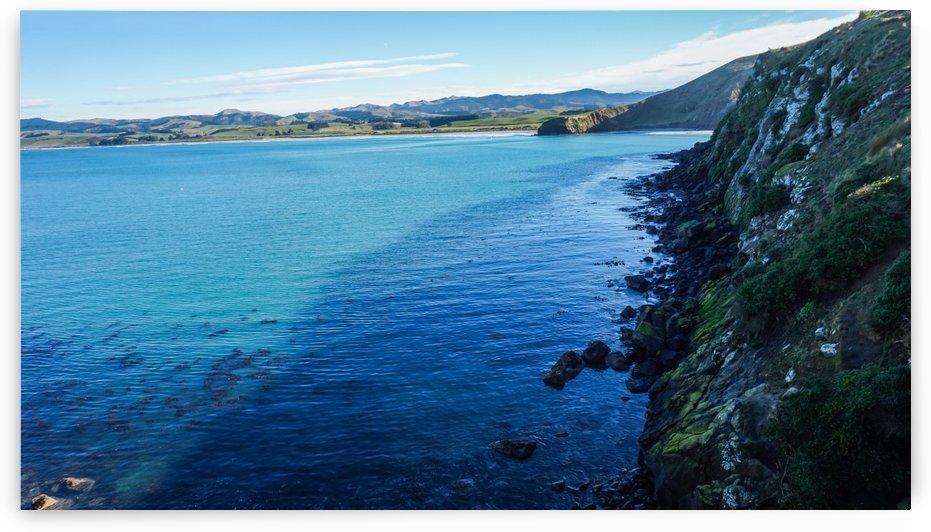 Coast of New Zealand by Phano Smith