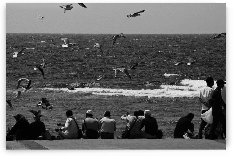 birds over the human by rahmat nugroho