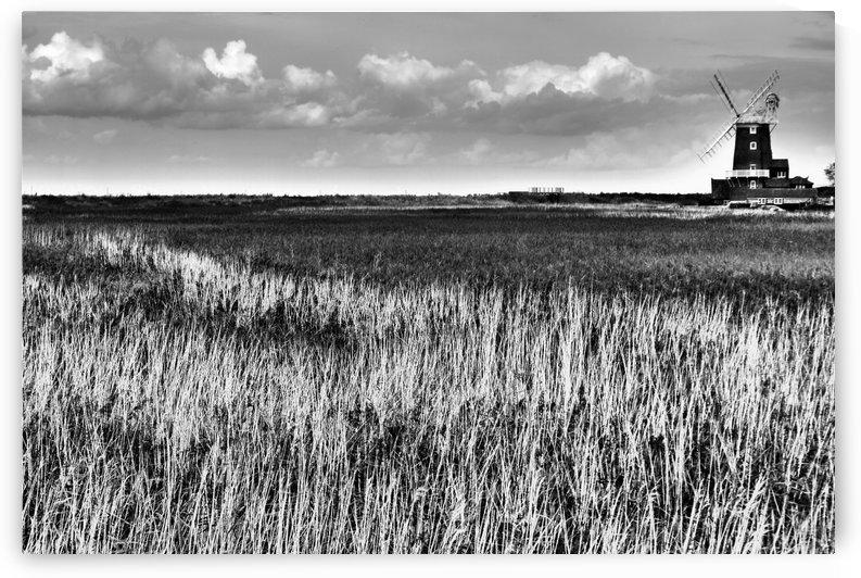 Marsh windmill by Andy Jamieson