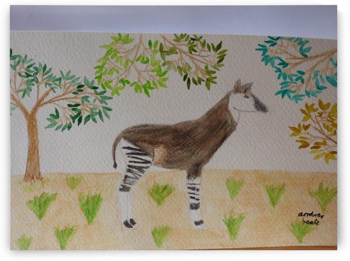 Okapi by Andres Beate