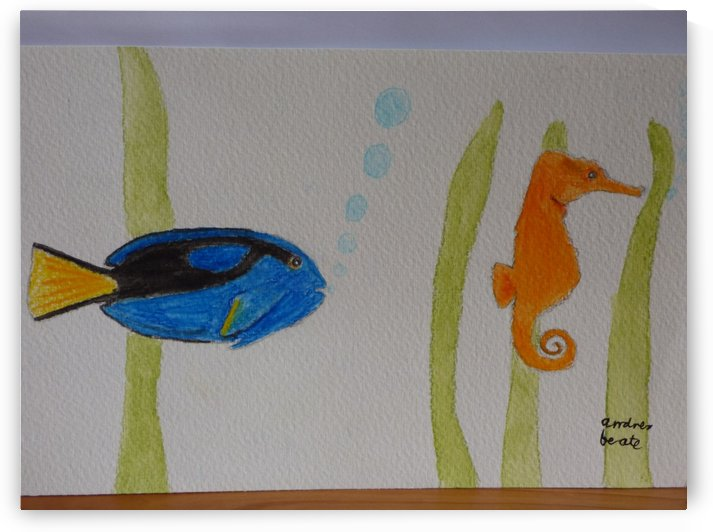 Doctorfish and seahorse by Andres Beate