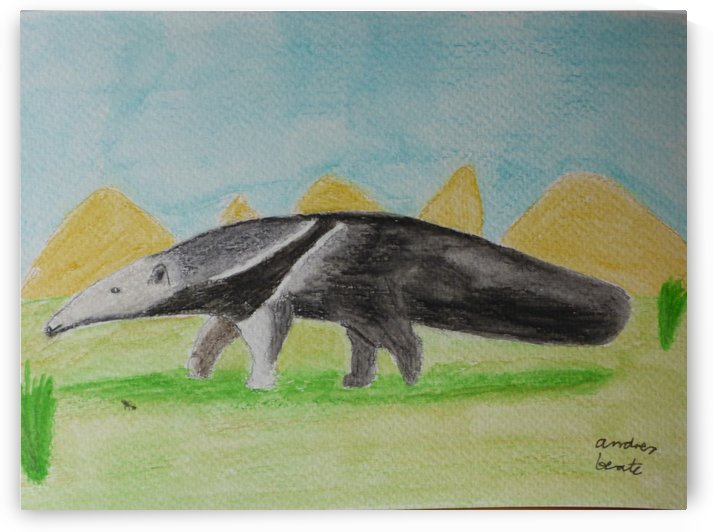 Anteater by Andres Beate