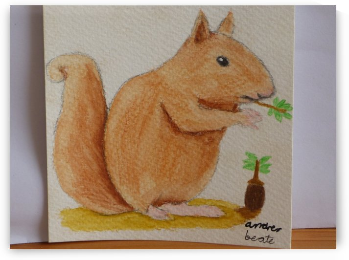 Squirrel  by Andres Beate