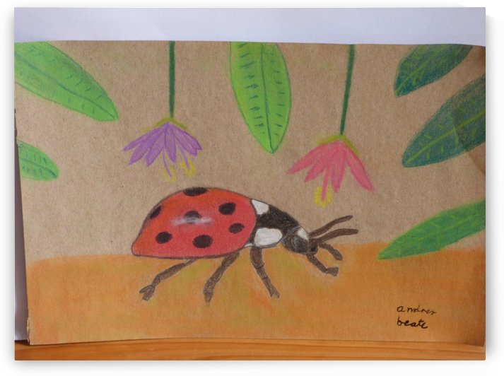 Ladybug by Andres Beate