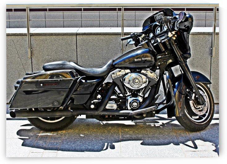 Harley Davidson by Mariusz Wojcik
