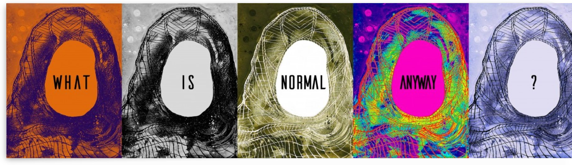What Is Normal Anyway by Rana Obaid