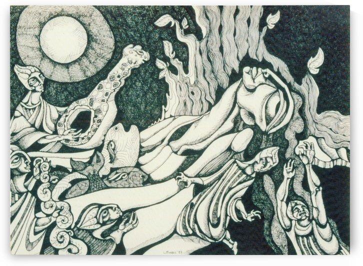 THE SONG OF A FAIRY by Lynn Kauffman