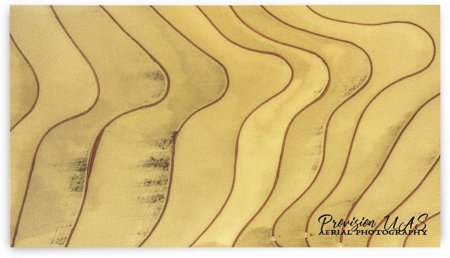 Lonoke, AR | Rice Levees  by Provision UAS