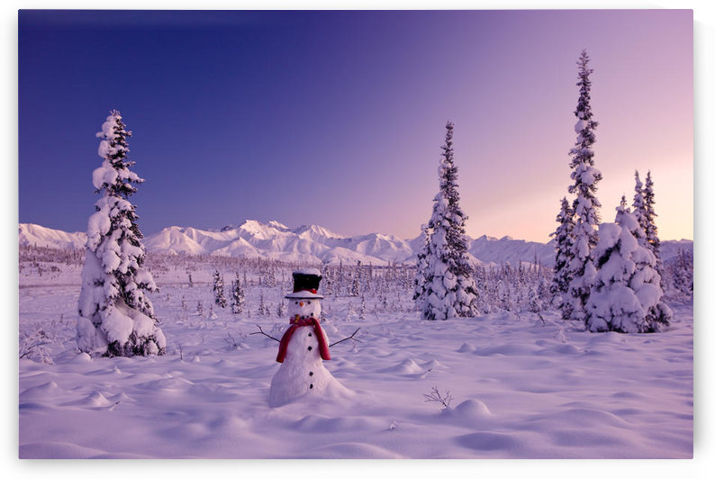 Snowman At Sunset, Snow Covered Spruce Trees, Winter, Chugach Mountains In The Background, Glenn Highway, Alaska Usa. by PacificStock