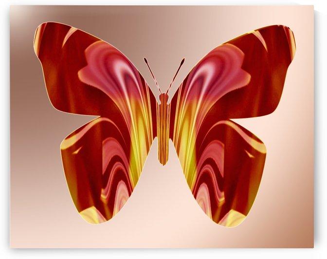 BejeweledButterfly by Cheryl Barker
