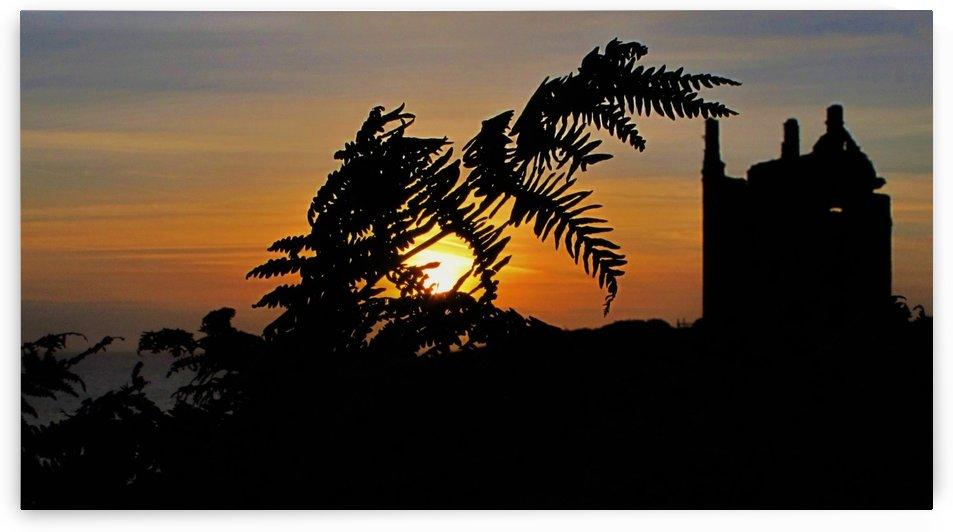 Fern castle sunset by Andy Jamieson