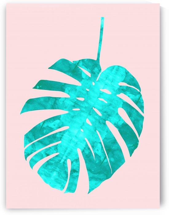 Tropical leaf by Vitor Costa