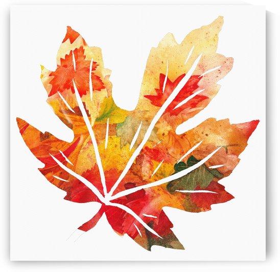 Autumn Maple Leaf by Irina Sztukowski