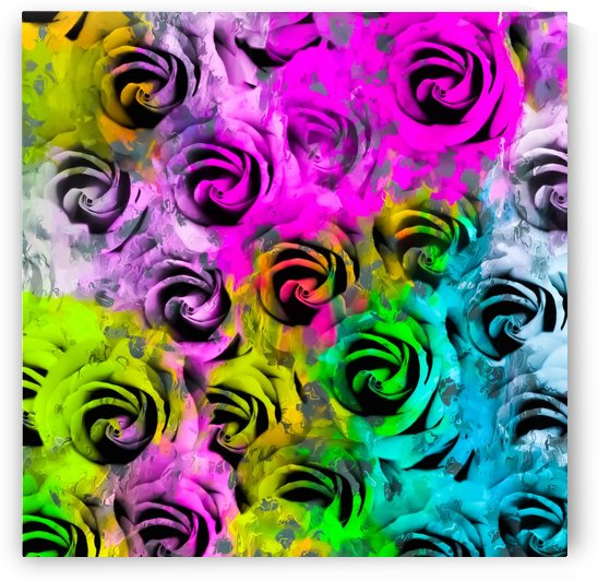 rose texture abstract  with colorful painting abstract background in pink blue yellow green by TimmyLA