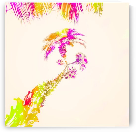 palm tree over the sky in pink purple green yellow by TimmyLA